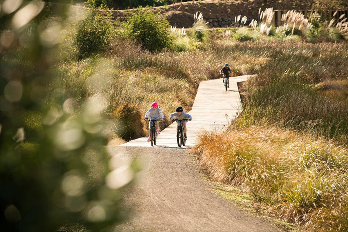 Tauranga's Urban Cycleway