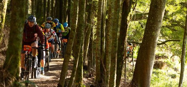 https://www.henrymagazine.nz/events/craters-classic-mountain-bike-event/
