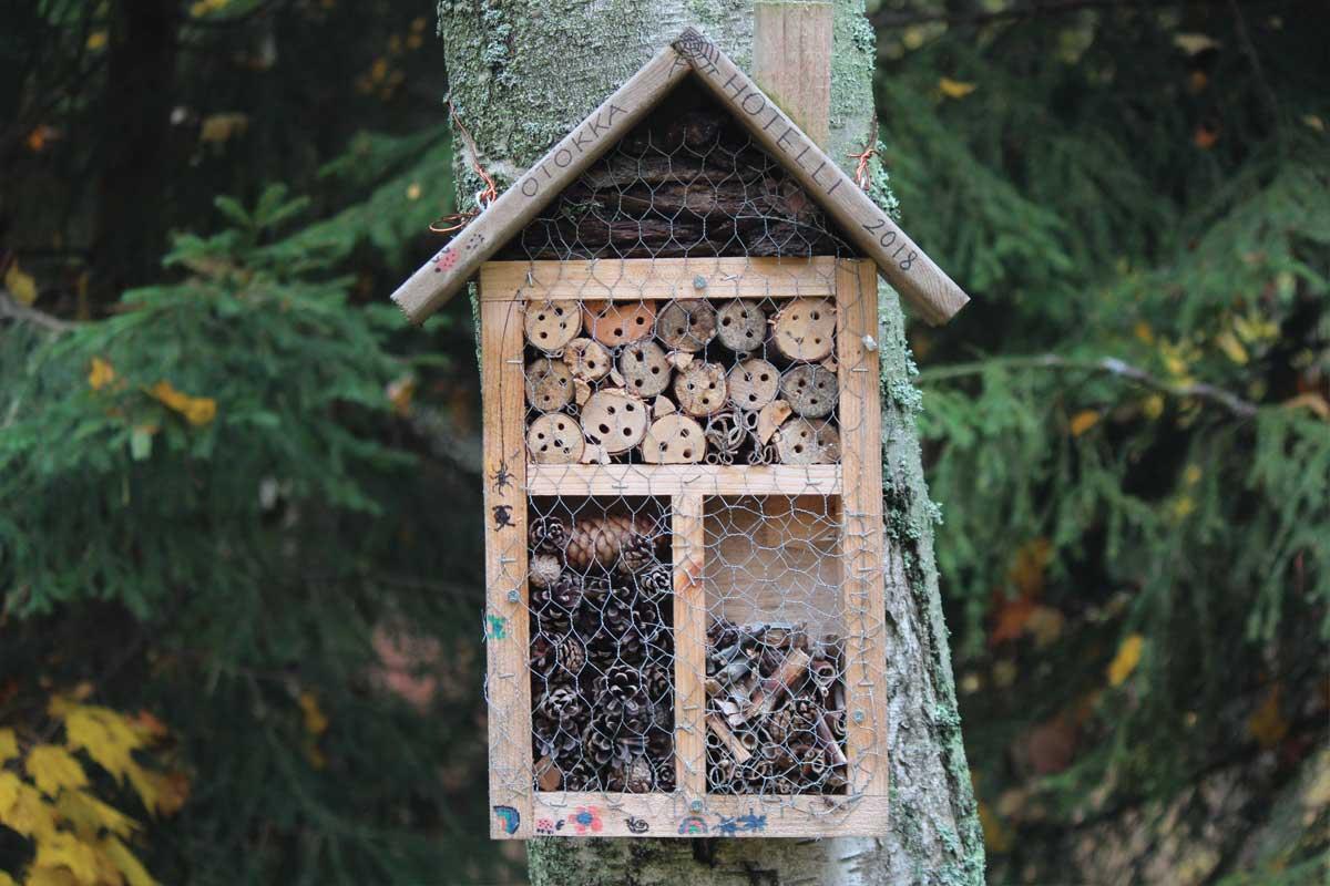 Kids Fun – Make a Bug Hotel
